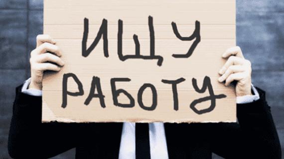 Кредит безработным: дадут ли займ без работы